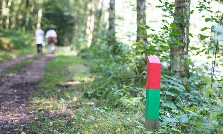 wandelen-limburg